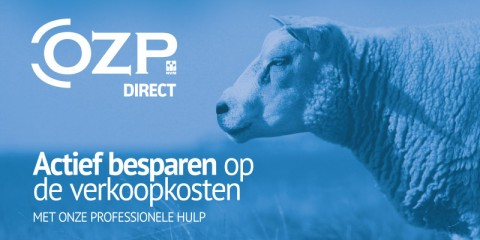 OZP Direct