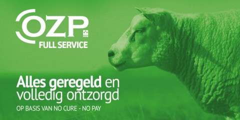 OZP Full Service