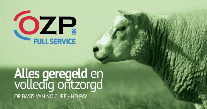 OZP Full Service 2019